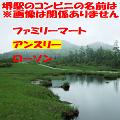 quiz_web_SMA
